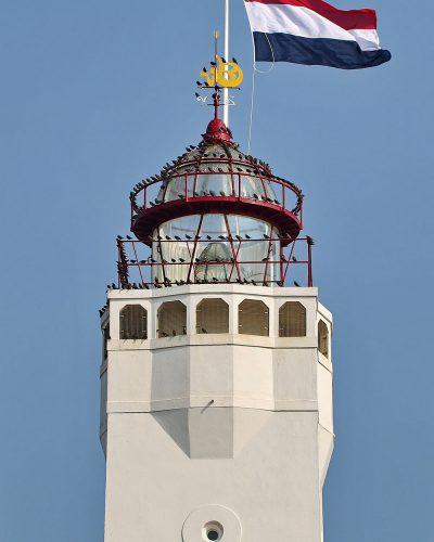 vlag een dag Vuurtoren Noordwijk